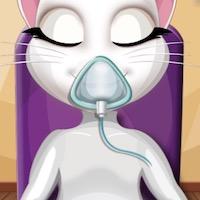Angéla cica kórházban
